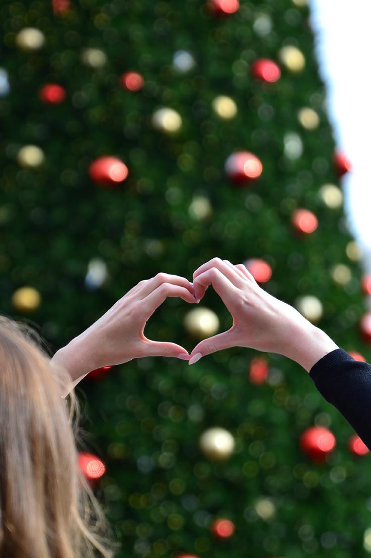 arum-lilea-christmas-tree-union-square